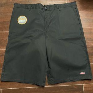 NWT Dickies shorts 42